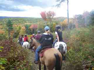 Trail ride dry brook copy 2.jpg